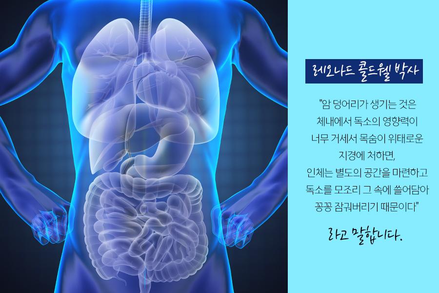 암은 해독(디톡스)을 잘하면 치유된다. 002.jpg